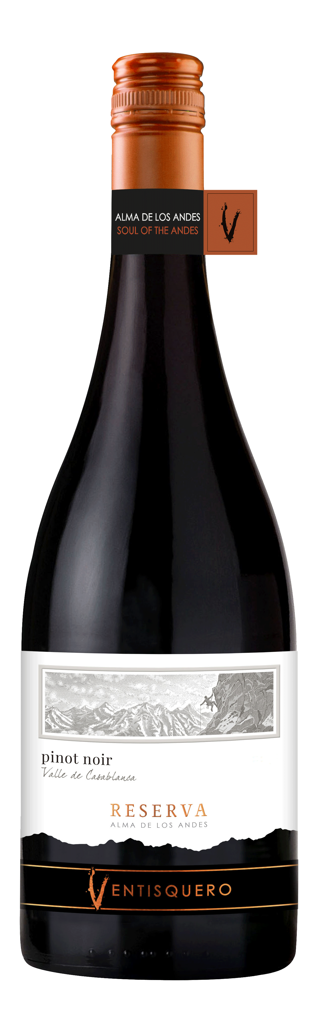 What Food Is Good With Pinot Noir